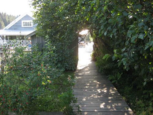 Rental Cabin Enterance Closure