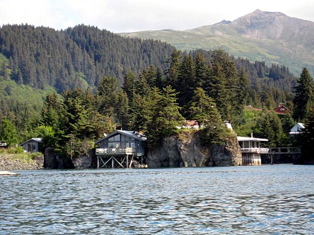 Rental Cabin from harbor Seldovia Alaska