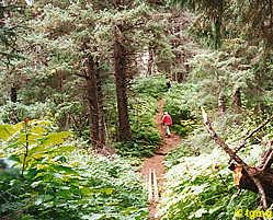 pict_hiking_otterbaun5
