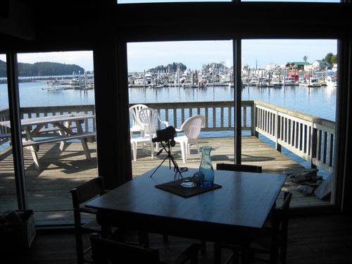 Rental Cabin Harbor View Seldovia Alaska